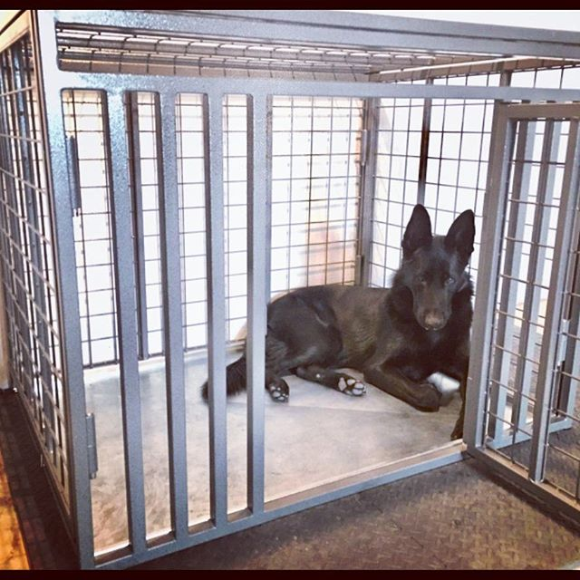 Custom Heavy Duty Dog Crate by Xtreme from Carrymydog.com