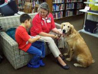 The Healing Role Of Therapy Dogs