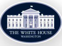 Bo Obama Proud Owner of a Potty Park, World's Finest Indoor Dog Potty