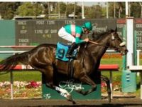 ZENYATTA  2010 Santa Margarita Handicap a textbook example